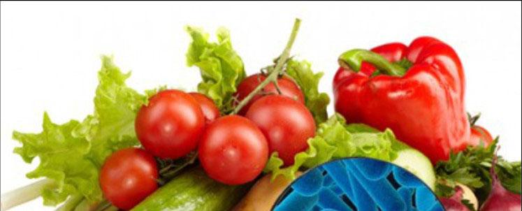 Gestão da Segurança de Alimentos e Qualidade Nutricional